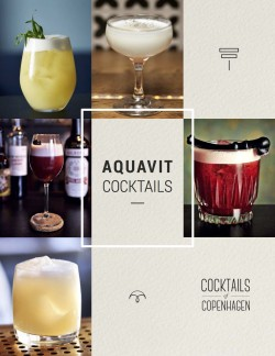 aquavit cocktails e-book cover
