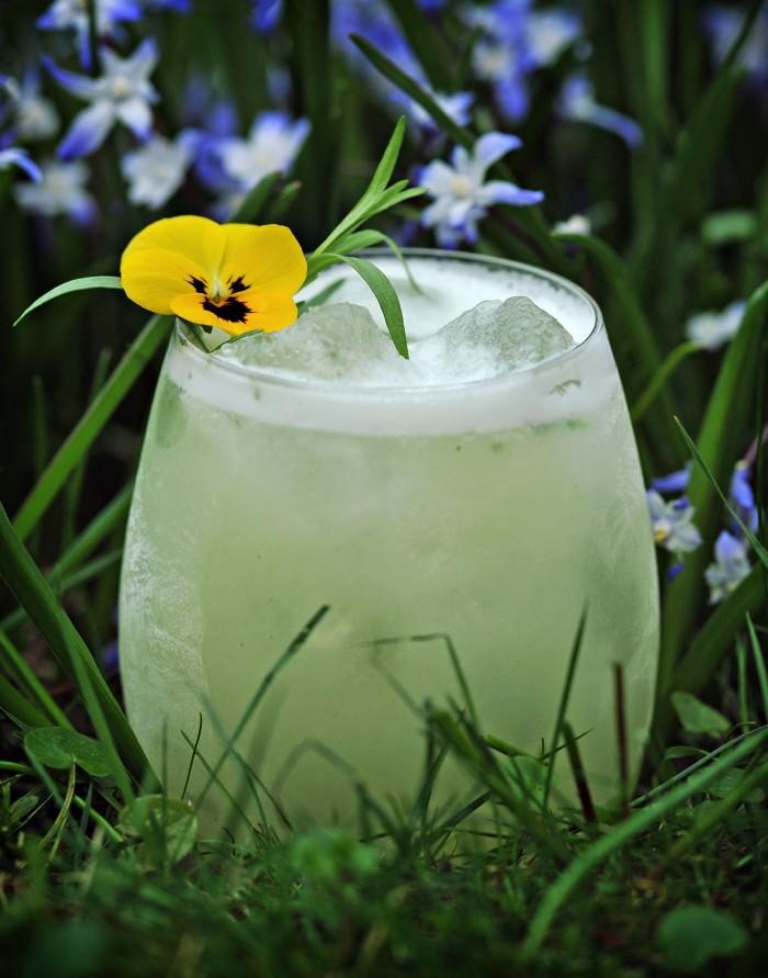Spring Garden Sour