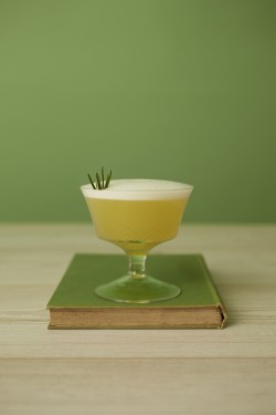 Seedlip Garden Sour