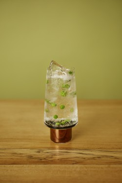 Seedlip Garden & Tonic
