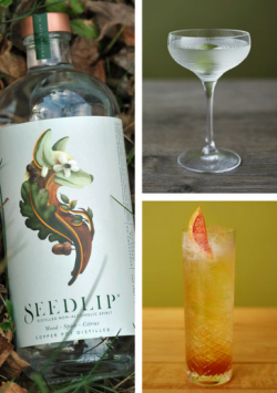 Seedlip Spice recipes