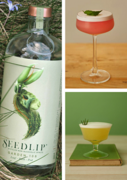 Seedlip Garden recipes